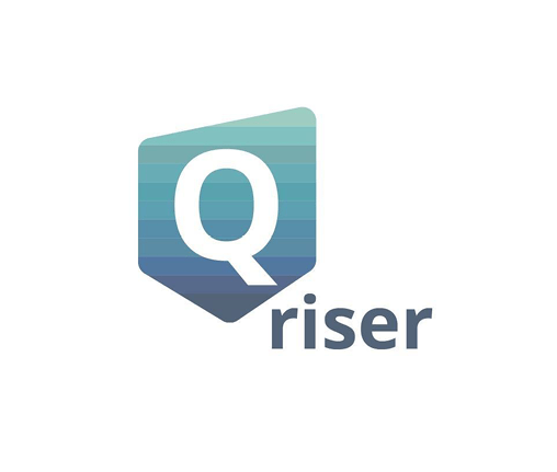 qriser-logo-seo-the-inner-view